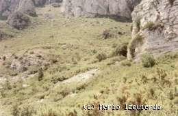 Vandellós: Dolomías masivas y estratificadas