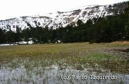 Neila: Glaciarismo