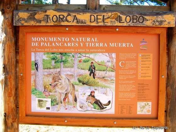 Torcas de los Palancares: